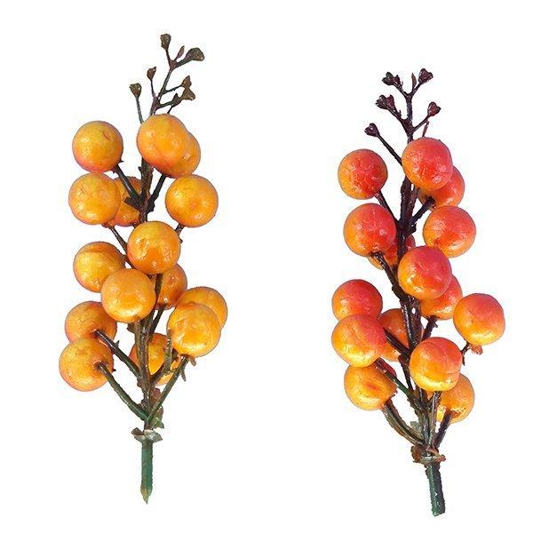 Christmas Berry Pick Orange